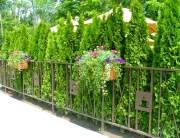 finelli iron custom commercial iron restaurant patio fence in chagrin falls ohio