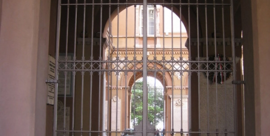 custom quality iron driveway gate